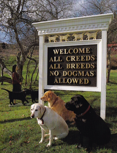 Dog Chapel sign - No Dogmas