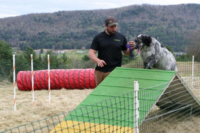 playing on the dog agility course