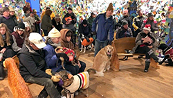 Winter event in the Dog Chapel