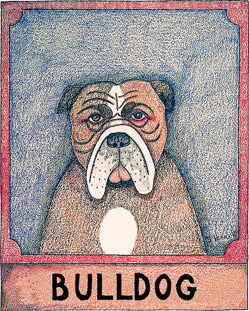 Bulldog - Crayon Print
