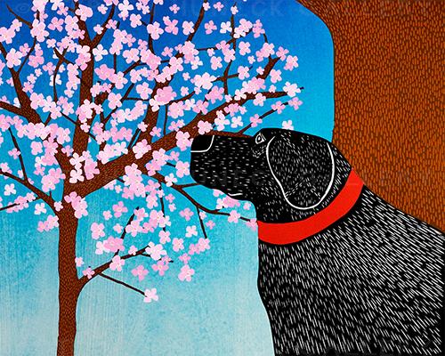 Cherry Blossom - Giclee Print