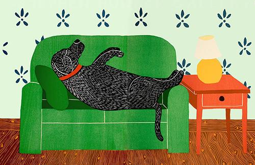 Dog Bed - Full Edition Print