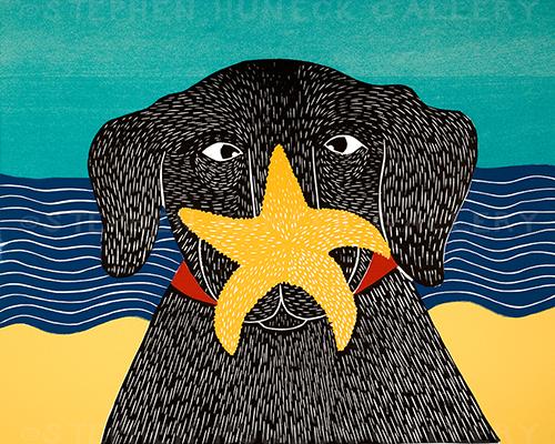Starfish - Giclee Print