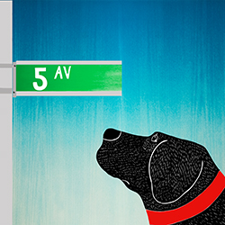 5th Ave - Giclee Print