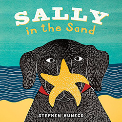 Sally in the Sand - Board Book