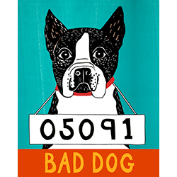 Bad Dog-Boston Terrier - Giclee Print