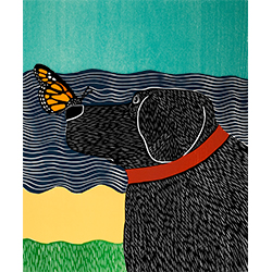 Butterfly - Giclee Print
