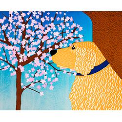 Cherry Blossom-Golden - Giclee Print