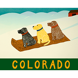 Sled Dogs-Colorado - Giclee Print