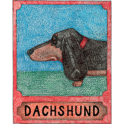 Dachshund - Crayon Print