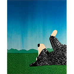 Day Dreaming-Border Collie - Giclee Print