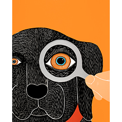 Eye Exam - Giclee Print