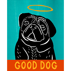 Good Dog-Black Pug - Giclee Print