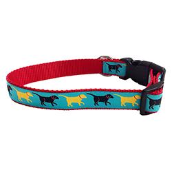 Greetings - Pet Collar