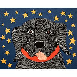 I See Stars - Giclee Print
