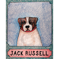 Jack Russell - Crayon Print