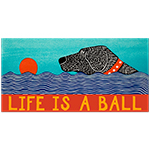 Life is a Ball - Bumper Sticker Magnet
