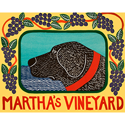 Martha's Vineyard Grapes - Giclee Print