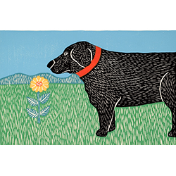 Nature Walk-Good Dog - Giclee Print