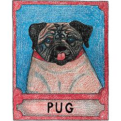Pug - Crayon Giclee Print