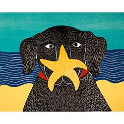 Starfish - Original Woodcut