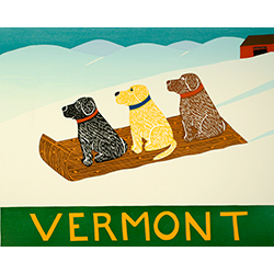 Sled Dogs-Vermont - Giclee Print