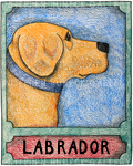 Yellow Lab - Crayon Giclee