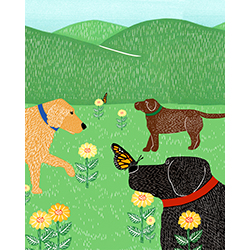 Flowers and Butterflies - Giclee Print